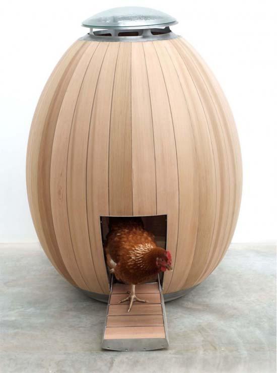 Modern-Chicken-Coop-Ideas-1