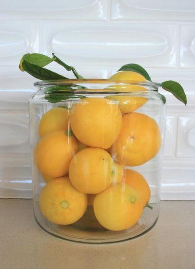 Lemonsorbet_1