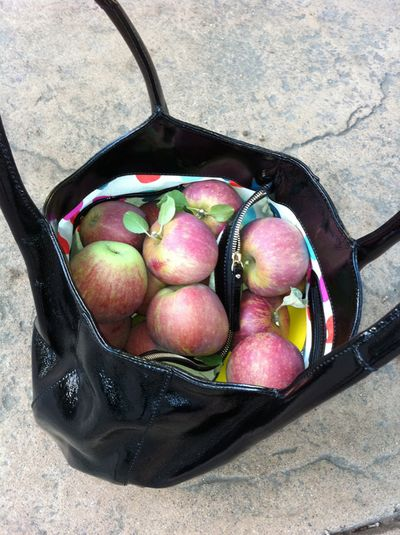 Applesinpurse