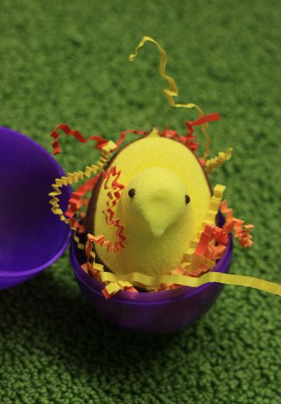 Easteregg3