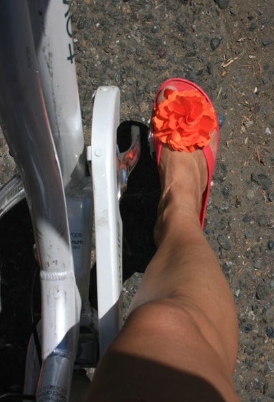 Healdsb_bike1