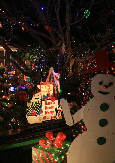 Christmaslights1
