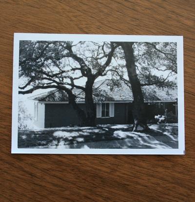 Thishouse1