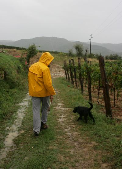 Truffle_hunting_croatia_9