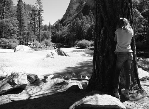 Yosemite_18