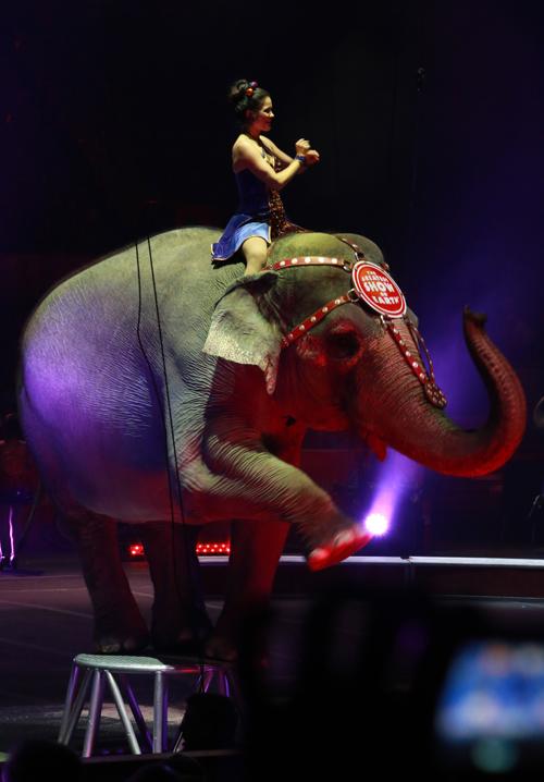 Circus_27