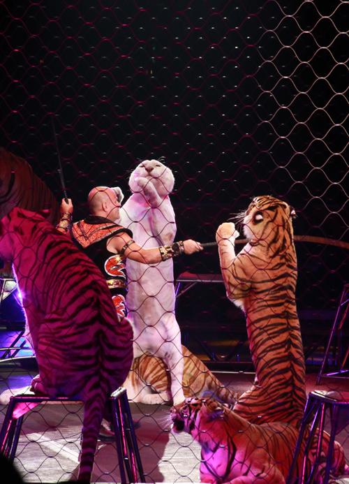 Circus_20