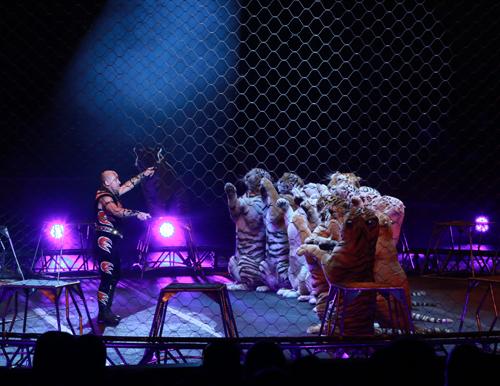 Circus_21