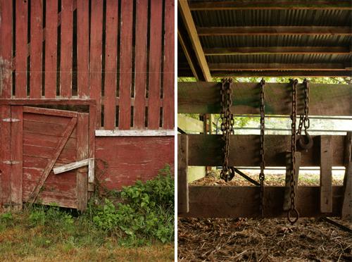 Farm_to_table_clare_barboza_20