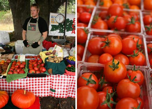 Farm_to_table_clare_barboza_37