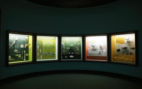 Smithsonian_12