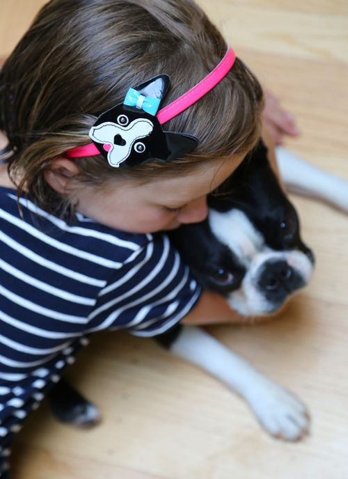 Boston_terrier_birthday_6