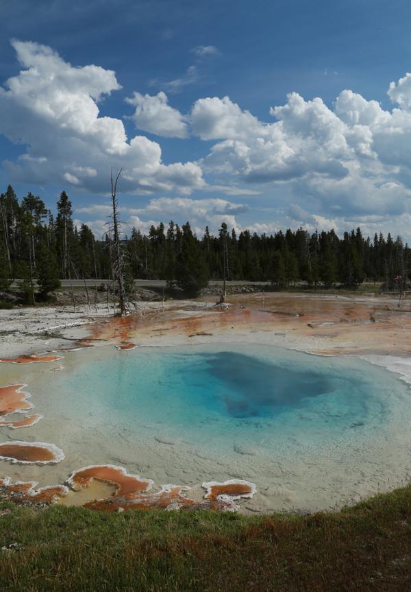 Yellowstone_27