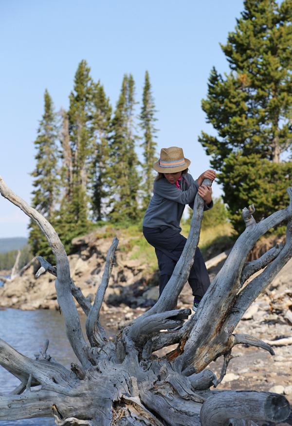 Yellowstone_16