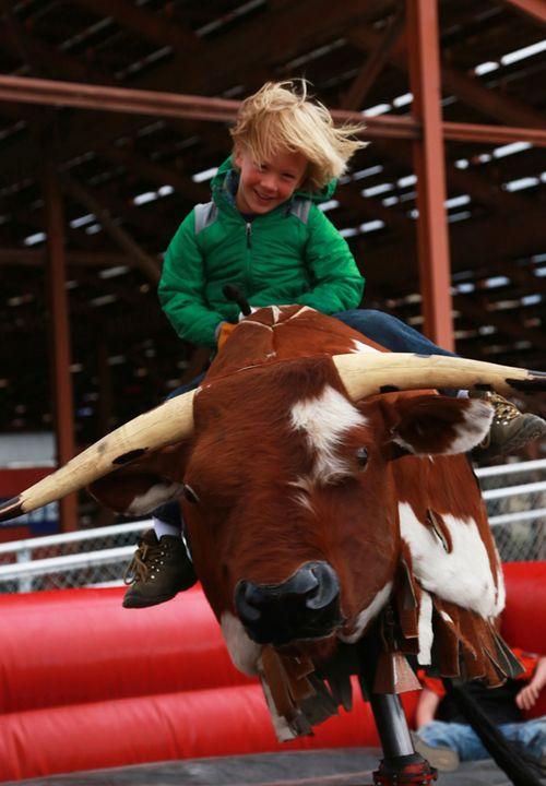 Cody_rodeo_cattle_company_chuckwagon_dinner_18