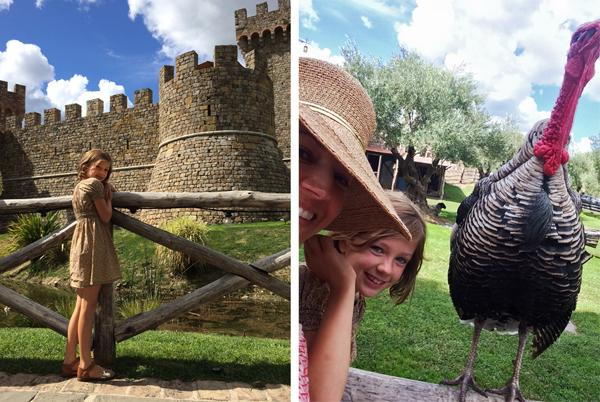Homeschool_castello_di_amorosa