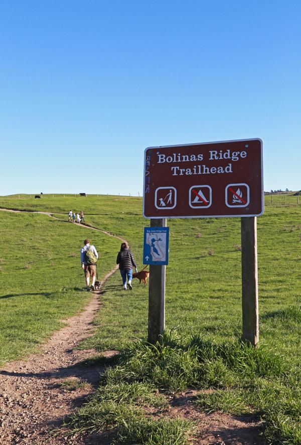 Bolinas_ridge_trailhead_1