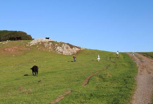 Bolinas_ridge_trailhead_3