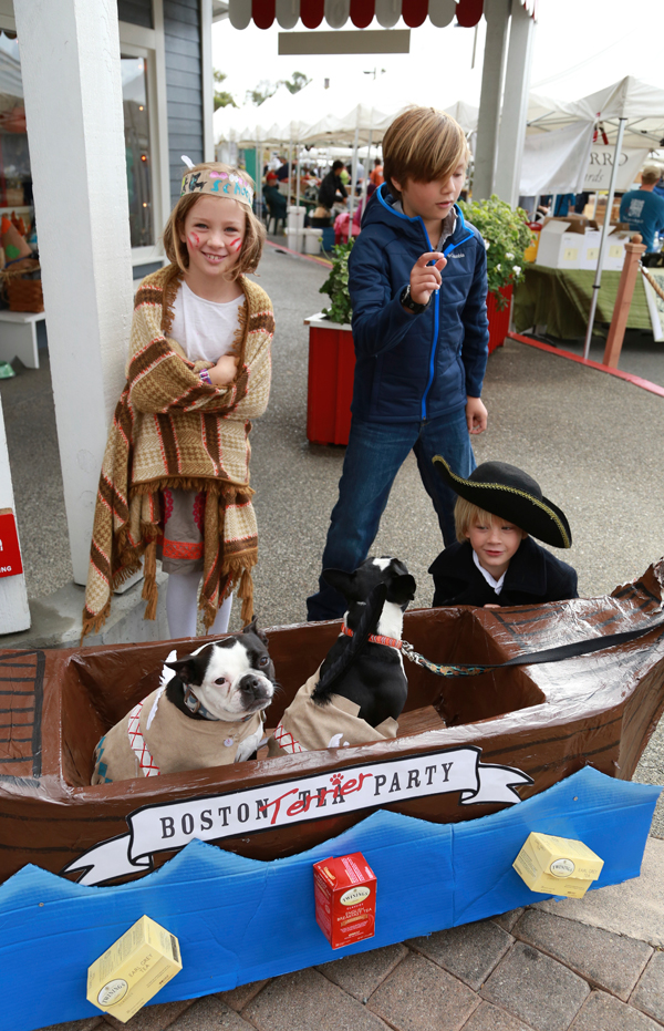 Boston_terrier_party_1