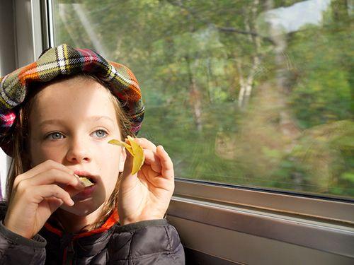 Train_to_malaig_4
