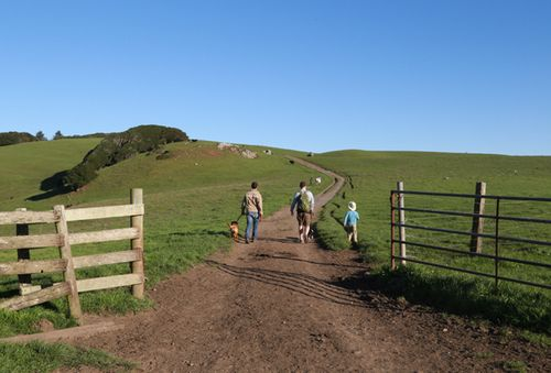 Bolinas_ridge_trailhead_2